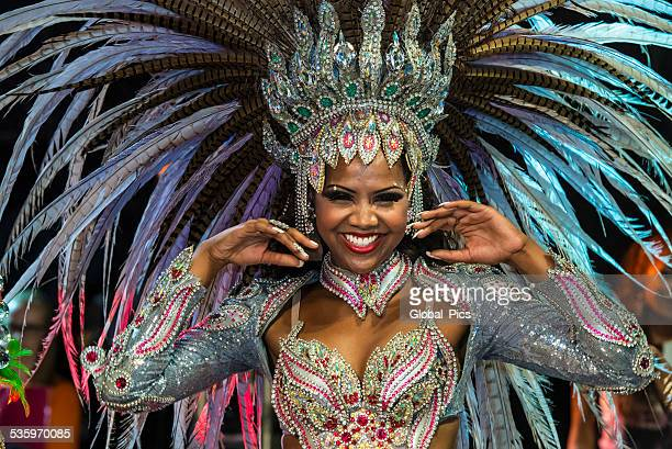 brazil carnival 2015 - carnival stock photos and pictures