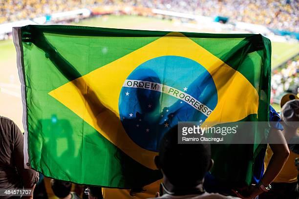 Brazil fan at stadium, soccer