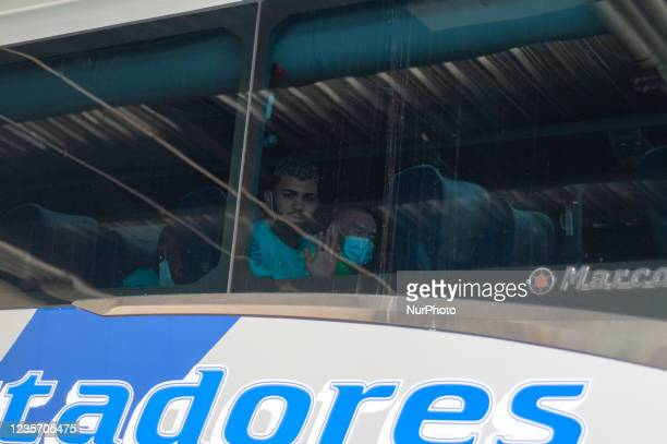 Brazil football team Gabriel Barbosa AKA gabigol looks out from the bus as members of the Brazil federation of football team board their bus at the...
