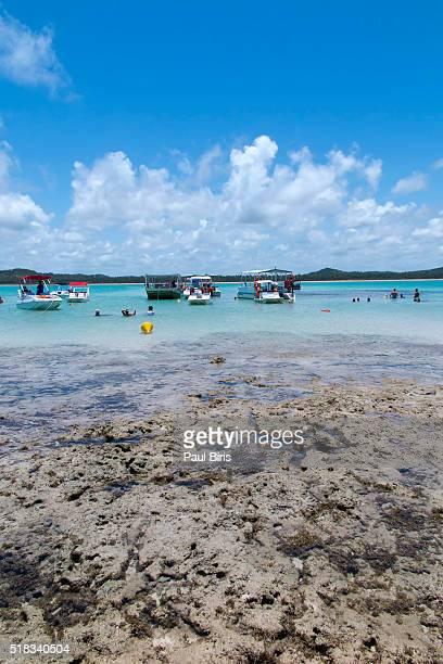 Brazil, Northeast, AL, Alagoas, Maragogi, Maragogi Beach, Natural Swimming Pools