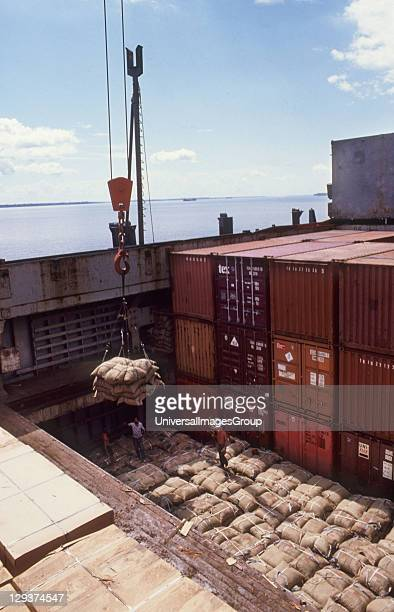 Brazil Nuts Brazil Belem Docks Sacks Of Brazil Nuts Being Loaded Onto A Ship For Export To Europe And North America Millions of dollars worth of...