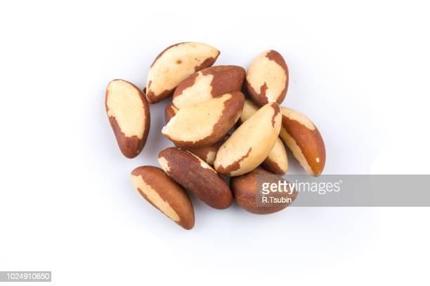 brazil nuts close-up isolated on white background - brazil nut fotografías e imágenes de stock
