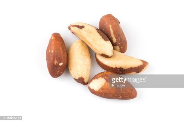 brazil nuts on white background close up - brazil nut fotografías e imágenes de stock