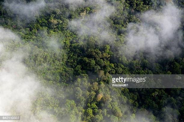 Brazil, Para, Amazon rainforest and clouds