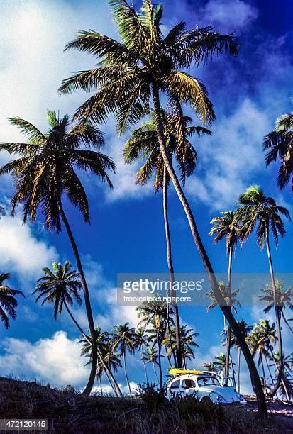 brazil, pernambuco, porto galinhas, car with surfers. - porto galinhas stock photos and pictures