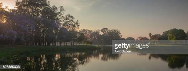 brazil. - alex saberi photos et images de collection