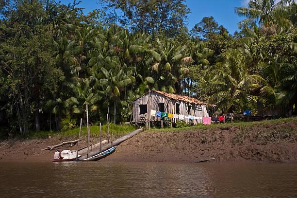 brazilian amazon riverine people ribeirinho those who pictures