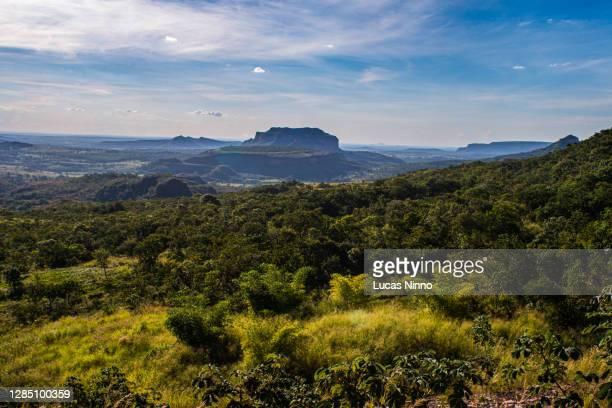 brazilian cerrado mountains - cerrado stock pictures, royalty-free photos & images
