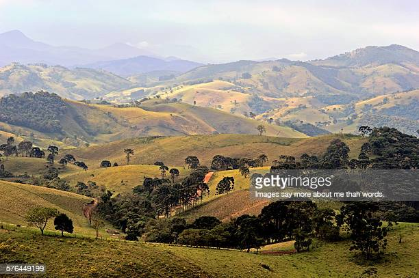 Brazilian countryside