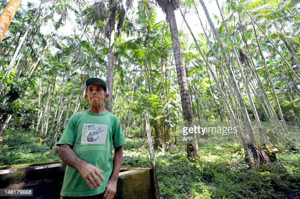 Brazilian farmer Manoel Jose Leite talks with AFP in an area reafforested with acai trees in Anapu in the northern Brazilian state of Para on June 1...