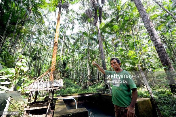 Brazilian farmer Manoel Jose Leite talks woth AFP in an area reafforested with acai trees in Anapu in the northern Brazilian state of Para on June 1...