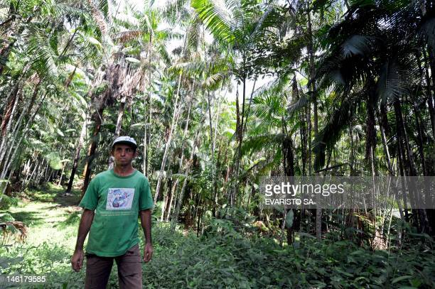 Brazilian farmer Manoel Jose Leite walks in an area reafforested with acai trees in Anapu in the northern Brazilian state of Para on June 1 2012...