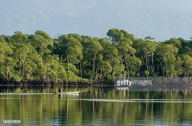 Brasileiro Pescador