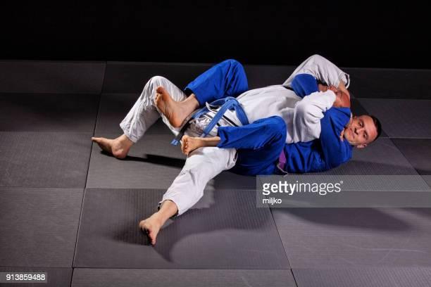 Brazilian jujitsu martial arts