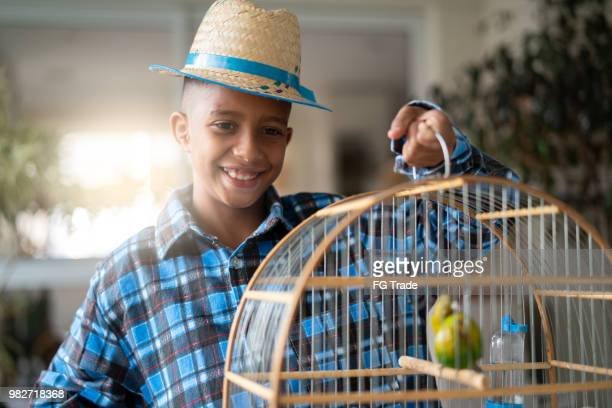 brazilian kid portrait with costume of junina party holding a bird cage (festa junina) - commercial event stock photos and pictures