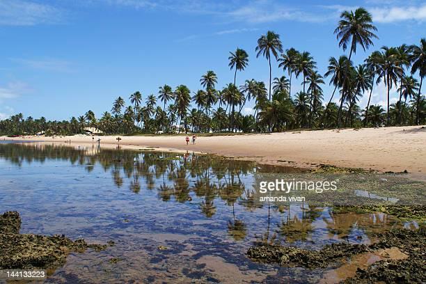 Brazillian paradise