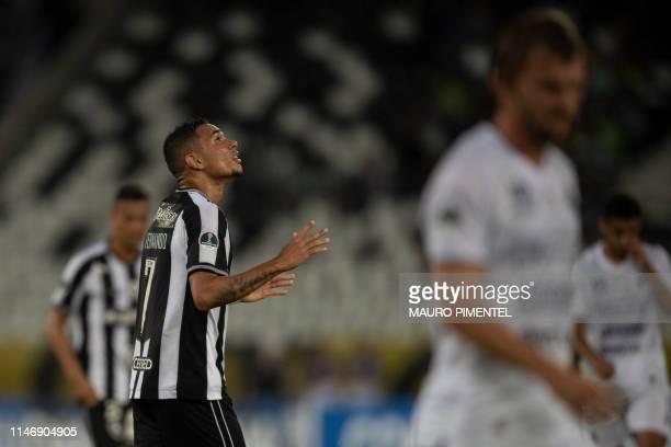 Brazil's Botafogo player Luiz Fernando celebrates after scoring aginst Paraguay's Sol de America during their Copa Sudamericana 2019 football match...