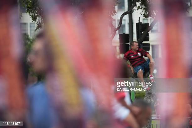 A Brazil's Flamengo fan waits sitting on a tree to greet their team during a celebration parade after their Libertadores Final football match victory...