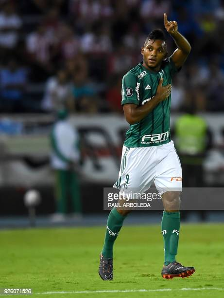 Brazil's Palmeiras player Miguel Borja celebrates his goal against Colombias Atletico Junior during their Copa Libertadores football match at Roberto...