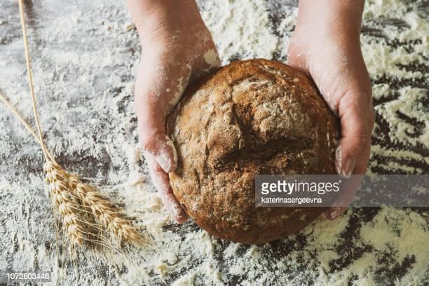 bread at the hands - pane foto e immagini stock