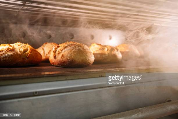 breads in oven at bakery - bread stock pictures, royalty-free photos & images