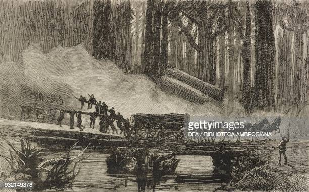 A breakdown in the redwoods scenes in and around San Francisco California United States of America illustration from the magazine The Graphic volume...