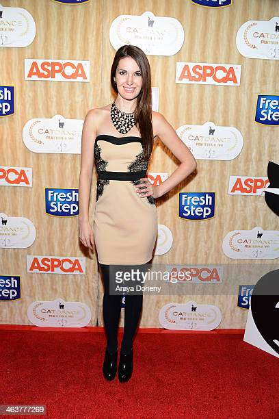 Breann Johnson attend the Fresh Step second annual Catdance Film Festival in 3D in Park City Utah on January 18 2014 Debuting five original cat films...