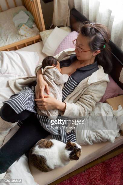 a breast-feeding mother and pet catcat - japanese breastfeeding stock pictures, royalty-free photos & images