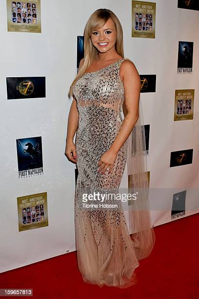 Bree Olson attends the 'Not Another Celebrity Movie' Los Angeles premiere at Pacific Design Center on January 17 2013 in West Hollywood California
