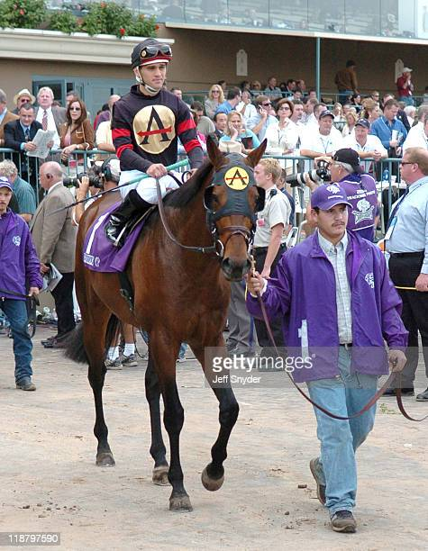 Breeders Cup Classic winner Ghostzapper with jockey Javier Castellano is led out for the start of the race