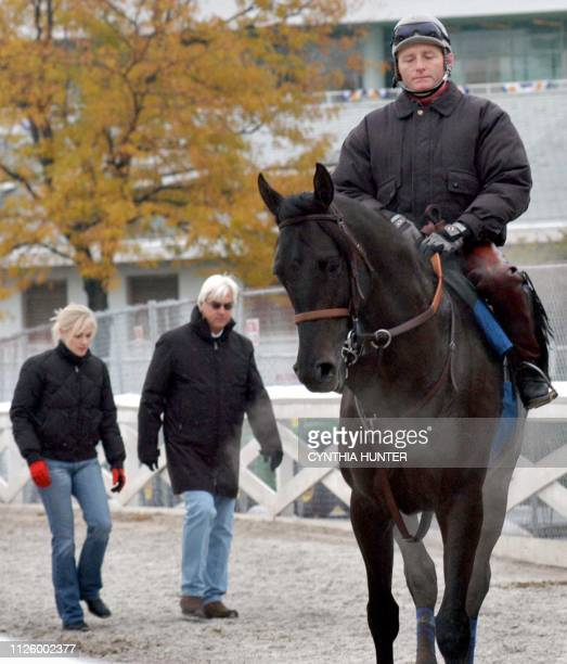 Breeders' Cup favorite Vindication followed by trainer Bob Baffert and his fiance Jill Moss goes through early morning workouts for the Breeders' Cup...