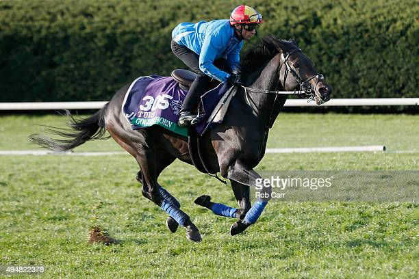 Breeders' Cup Turf entrant Golden Horn trains on the turf at Keeneland Racecourse on October 29 2015 in Lexington Kentucky