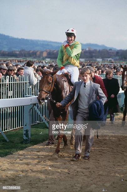 Bregawn ridden by Graham Bradley is led into the unsaddling enclosure at Cheltenham Racecourse after winning the Cheltenham Gold Cup 17th September...
