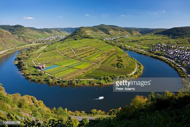 bremm, mosel bend, rhineland, germany - moselle stock pictures, royalty-free photos & images