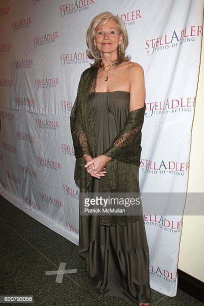 Brenda Siemer Scheider attends The 4th Annual STELLA BY STARLIGHT Benefit at Cipriani 23rd St. On March 17, 2008 in New York City.