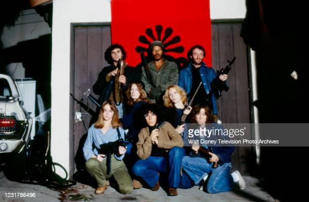 Brendan Burns, Felton Perry, Jonathan Banks, Catherine Butterfield, Tisa Farrow, Lisa Eilbacher as Patty Hearst, Anne de Salvo, Mary McCusker...