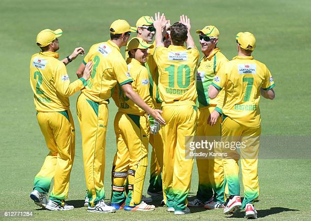 Brendan Doggett of CA XI celebrates with team mates after taking the wicket of Ben Dunk of Tasmania during the Matador BBQs One Day Cup match between...