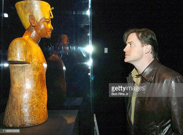 Brendan Fraser during 'Tutankhamun and the Golden Age of the Pharaohs' Opening Night Party at LACMA in Los Angeles California United States