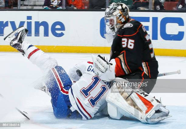 Brendan Gallagher of the Montreal Canadiens collides with goalie John Gibson of the Anaheim Ducks during the second period of the game at Honda...