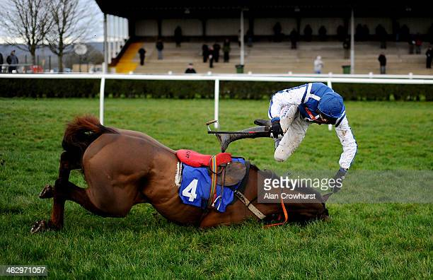 Brendan Powell falls from Flaming Charmer at the last in The Higos Insurance Services Street Novices' Limited Handicap Steeple Chase at Wincanton...