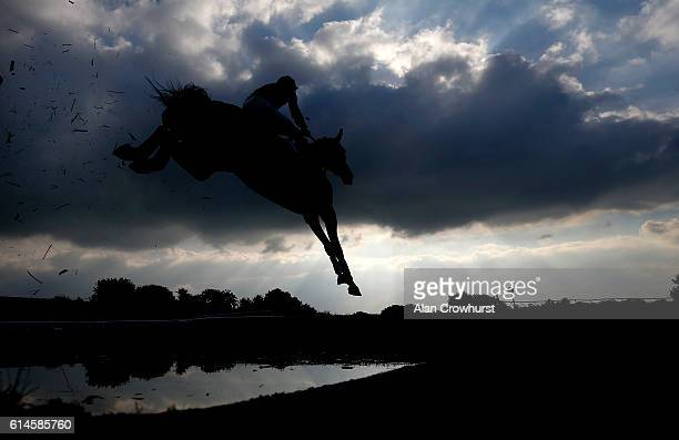Brendan Powell riding Kapgarde King clear the water jump before winning The Bathwick Tyres Yevil Novices' handicap Steeple Chase at Wincanton...