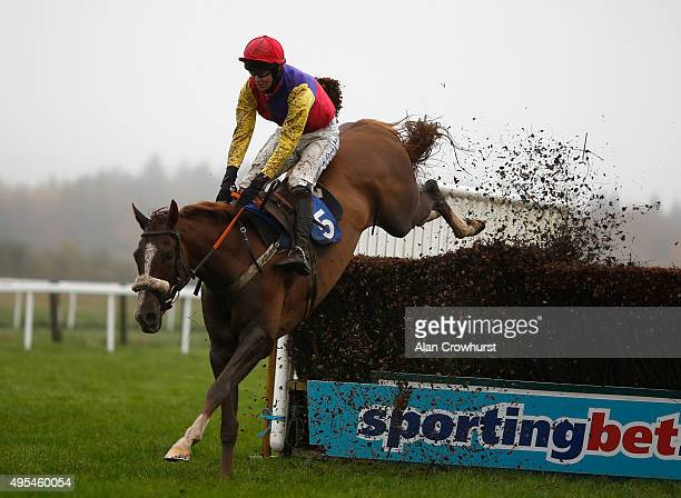 Brendan Powell riding Native River clear the last to win The Vix Technology Novices' Steeple Chase at Exeter racecourse on November 03 2015 in Exeter...
