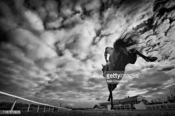 Brendan Powell riding Newtown Lad clear the last to win The Faucets And Rada The Professionals Choice Handicap Chase at Chepstow Racecourse on March...