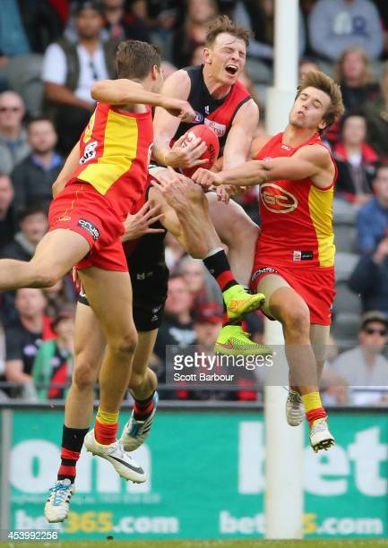 Brendon Goddard of the Bombers takes a mark during the round 22 AFL match between the Essendon Bombers and the Gold Coast Suns at Etihad Stadium on...