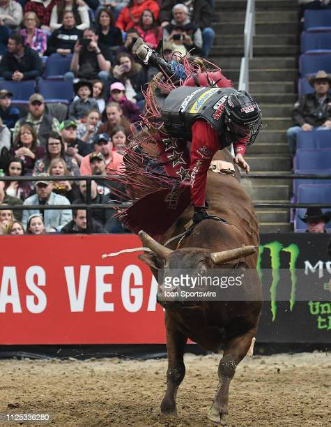 Brennon Eldred rides the bull Jungle Can Do during the Professional Bullrider's Mason Lowe Memorial on February 15 at Enterprise Center St Louis MO