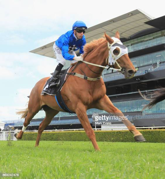 Brenton Avdulla on Blue Seal in an exhibition gallop during Sydney Racing at Royal Randwick Racecourse on October 21 2017 in Sydney Australia