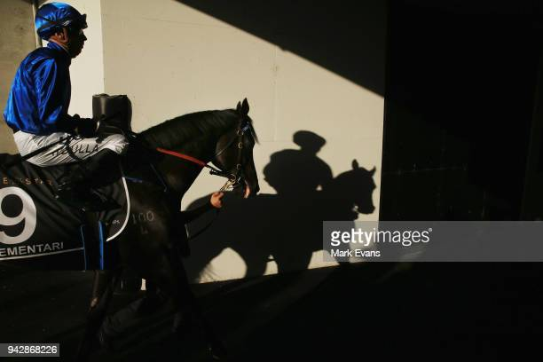 Brenton Avdulla on Kementari heads out of the mounting yard for the Doncaster during day one of The Championships at Royal Randwick Racecourse on...