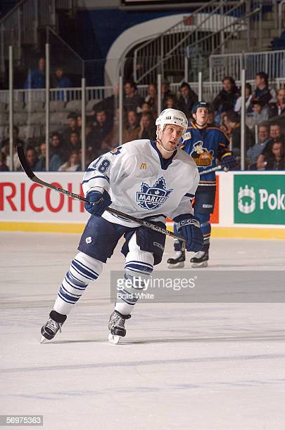 Brett Engelhardt of the Toronto Marlies skates against the Peoria Rivermen at Ricoh Coliseum on February 3 2006 in Toronto Ontario Canada The...