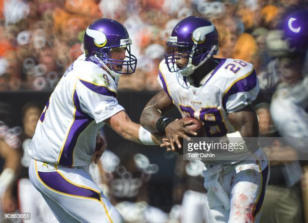 Brett Favre of the Minnesota Vikings hands off to teammate Adrian Peterson during an NFL game against the Cleveland Browns September 13 at Cleveland...