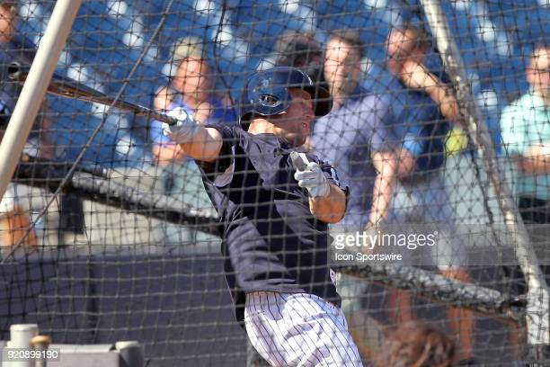 Brett Gardner takes a swing while in the batting cage during the New York Yankees spring training workout on February 19 at George M Steinbrenner...